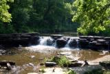 2004-06-06   (Waterfall Glen Forest Preserve)